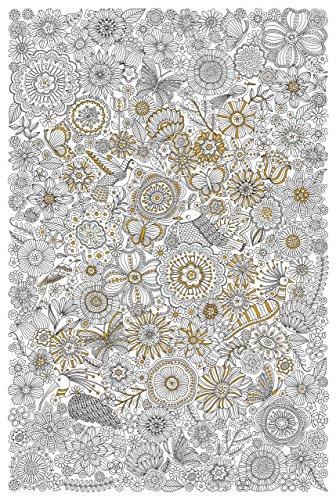 9781441321480: Blooms, Birds, & Butterflies Gold Foil Coloring Poster