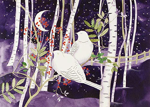 9781441333773: Doves in White Birches Deluxe Boxed Holiday Cards (Christmas Cards, Greeting Cards)