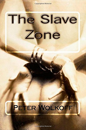 9781441404848: The Slave Zone: Volume 1