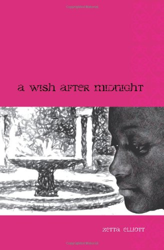 9781441474247: A Wish After Midnight