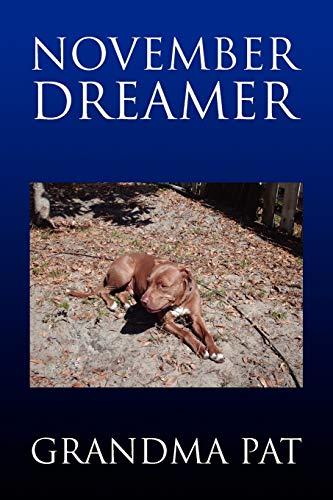 9781441515698: November Dreamer
