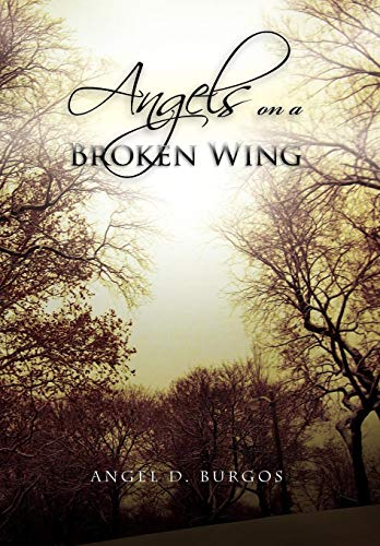 Angels on a Broken Wing: Angel D. Burgos
