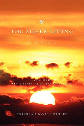 9781441589613: The Silver Lining: A novel