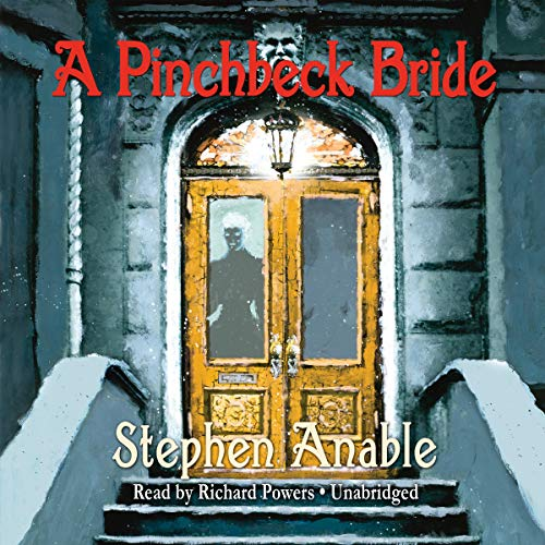 9781441777782: A Pinchbeck Bride (Library Edition) (Sequel to the Fisher Boy)