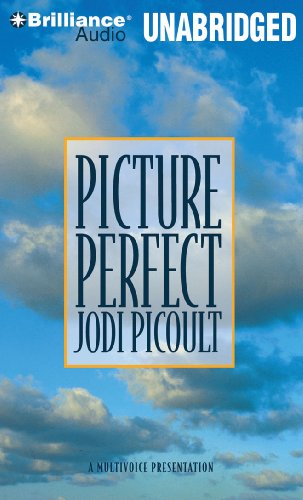 9781441801371: Picture Perfect