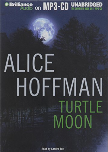 9781441812476: Turtle Moon