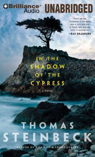 9781441838223: In the Shadow of the Cypress: A Novel