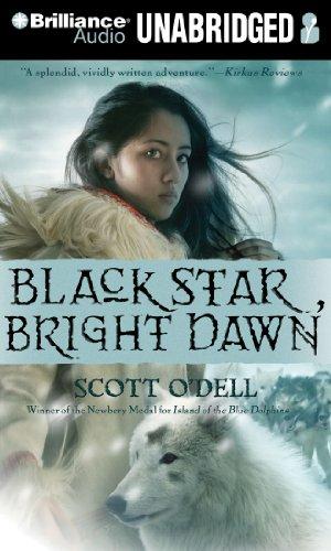 9781441871466: Black Star, Bright Dawn