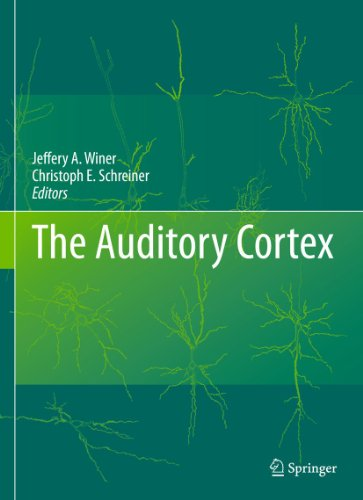 The Auditory Cortex: Jeffery A. Winer