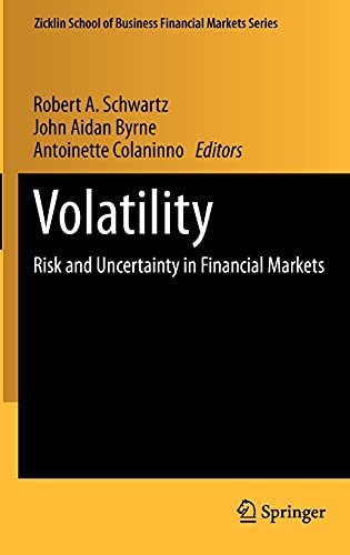 9781441914736: Volatility: Risk and Uncertainty in Financial Markets (Zicklin School of Business Financial Markets Series)
