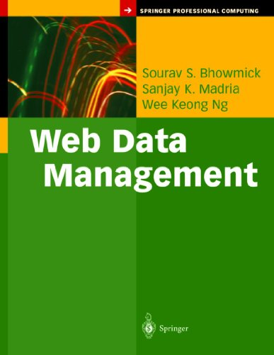 9781441918062: Web Data Management: A Warehouse Approach (Springer Professional Computing)