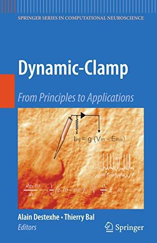 Dynamic-Clamp: Alain Destexhe