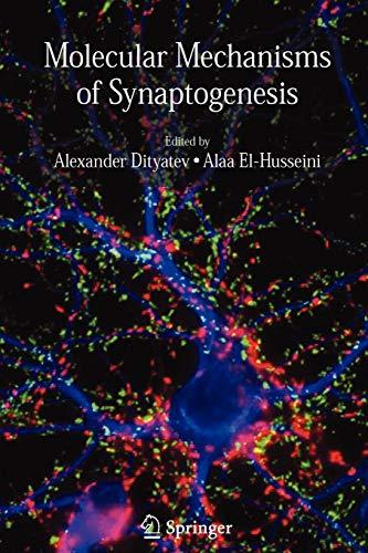 9781441940902: Molecular Mechanisms of Synaptogenesis