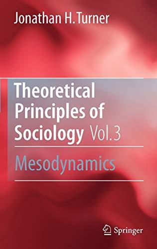 9781441962201: Theoretical Principles of Sociology, Volume 3: Mesodynamics