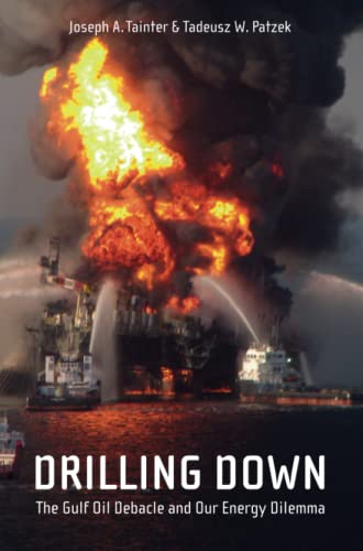 9781441976765: Drilling Down: The Gulf Oil Debacle and Our Energy Dilemma