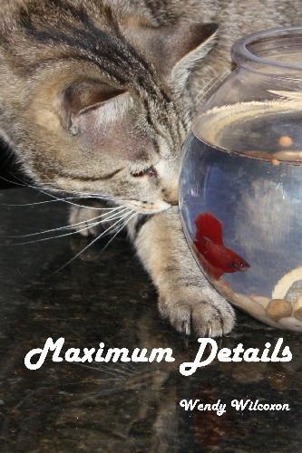 9781442152786: Maximum Details