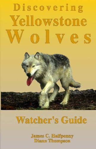 9781442153097: Discovering Yellowstone Wolves: Watcher's Guide