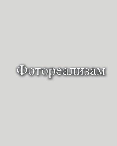 9781442168817: Photorealism (Macedonian Edition)