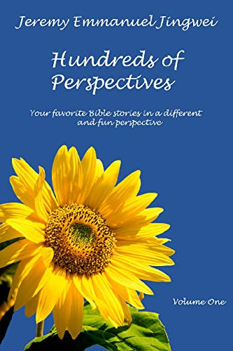 9781442182578: Hundreds of Perspectives: Your favorite Bible stories in a different and fun perspective