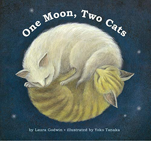 9781442412026: One Moon, Two Cats