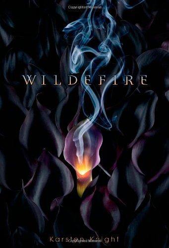 9781442421172: Wildefire