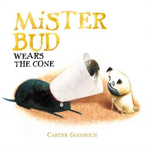 9781442480889: Mister Bud Wears the Cone