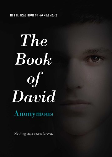 9781442489851: The Book of David
