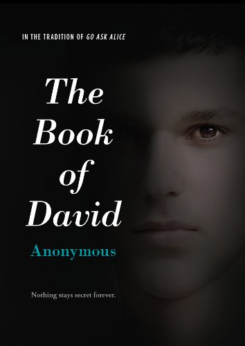 9781442489868: The Book of David