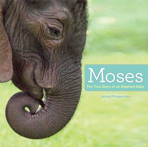 Moses: The True Story of an Elephant Baby: Perepeczko, Jenny