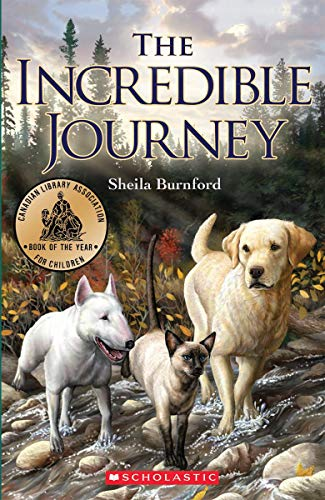 9781443100182: The Incredible Journey
