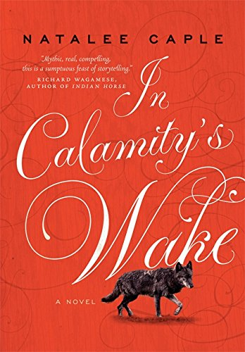 9781443406710: In Calamity's Wake