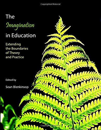 9781443801225: The Imagination in Education: Extending the Boundaries of Theory and Practice