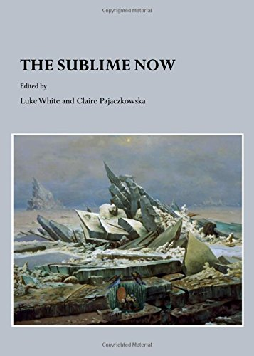 9781443813020: The Sublime Now