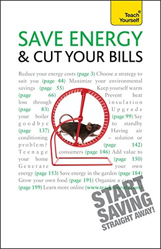 9781444101171: Save Energy And Cut Your Bills: Teach Yourself
