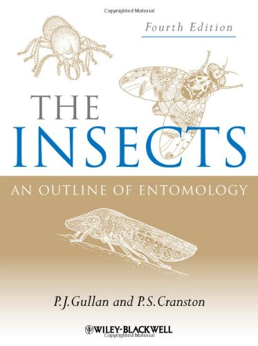9781444330366: The Insects: An Outline of Entomology