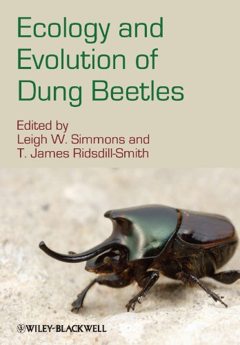 9781444333152: Ecology and Evolution of Dung Beetles