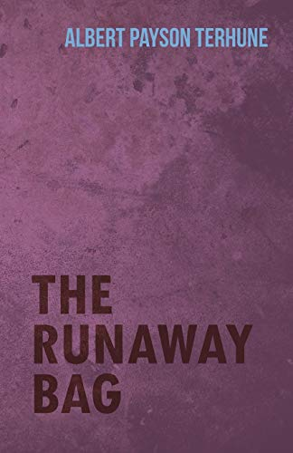 9781444658903: The Runaway Bag