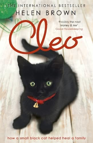 Cleo: The Cat Who Mended a Family: How a small black cat helped heal a family