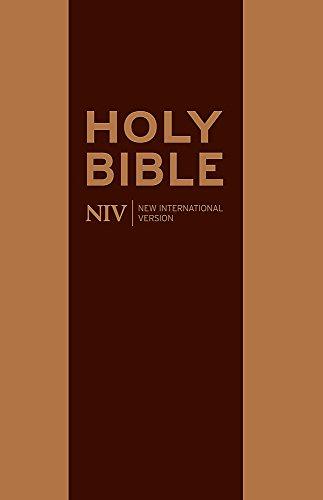NIV Traveller s Soft-Tone Bible (Paperback): New International Version