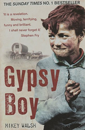 9781444707427: Gypsy Boy By Mikey Walsh