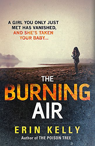 9781444728316: The Burning Air