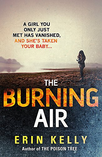 9781444728323: The Burning Air