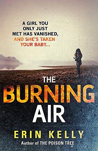 9781444728323: The Burning Air