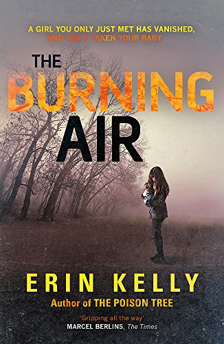 9781444728347: The Burning Air