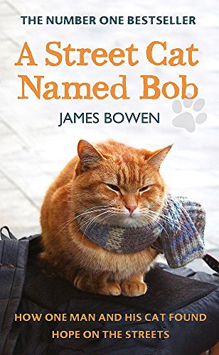 9781444737097: A Street Cat Named Bob: How one man and his cat found hope on the streets