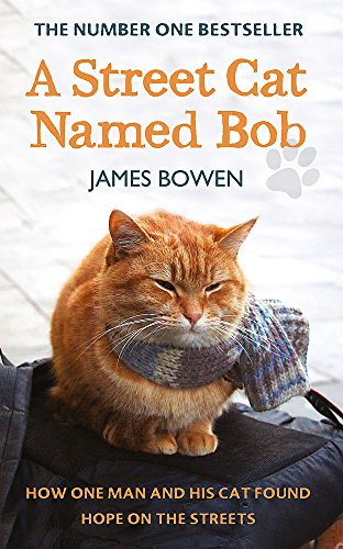 9781444737103: A Street Cat Named Bob