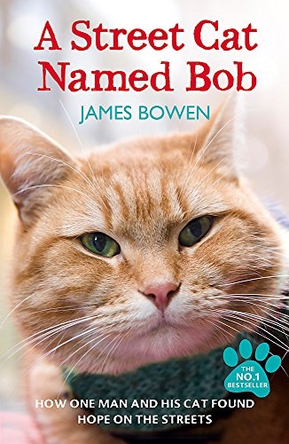 9781444737110: A Street Cat Named Bob: How one man and his cat found hope on the streets