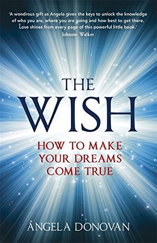 9781444740608: The Wish