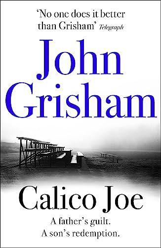 9781444744668: Calico Joe