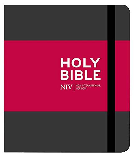 9781444745627: NIV Journalling Bible